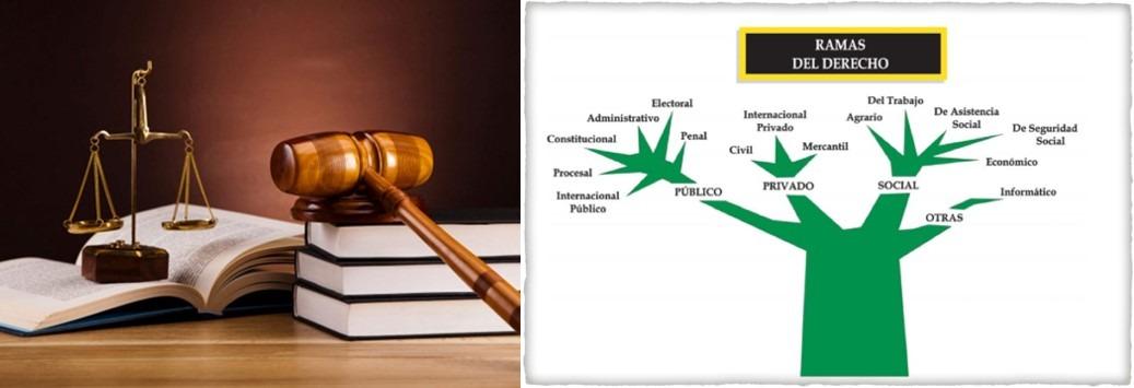 ramas y maestrías en derecho
